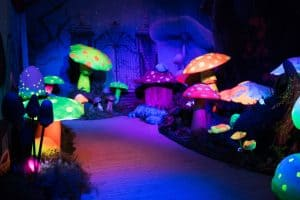 Experiential Events Alice and Wonderland Theme